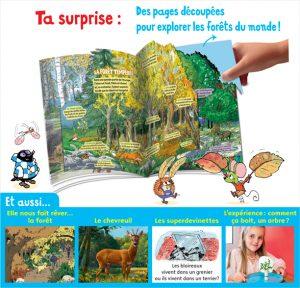 Des pages découpées pour explorer les forêts du monde.