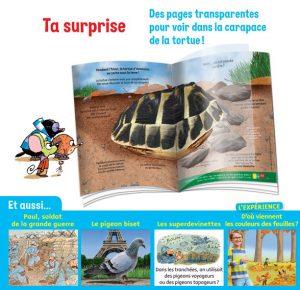 Des pages transparentes pour voir dans la carapace de la tortue !
