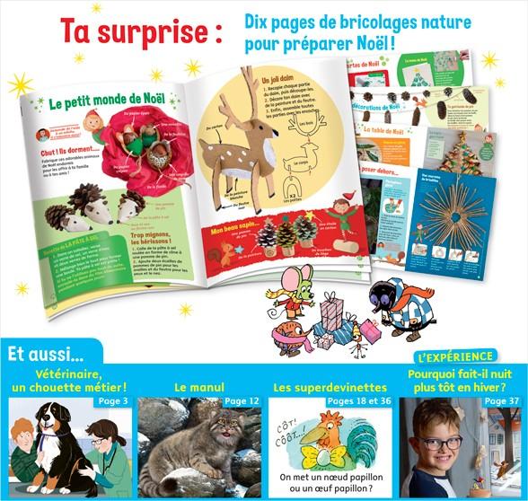 Sommaire du magazine Youpi, j'ai compris ! n°375, décembre 2019 - Alice, vétérinaire - 10 pages de bricolages nature pour préparer Noël