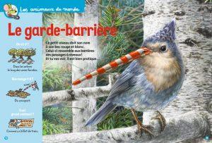 Youpi n°379, avril 2020. Texte : Pauline Payen. Illustration : Caroline Picard.