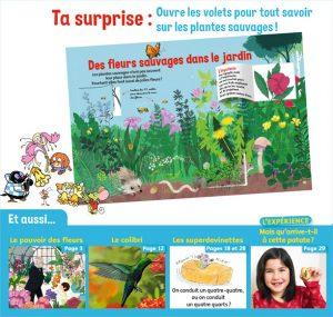 Ta surprise : Ouvre les volets pour tout savoir sur les plantes sauvages - Youpi, j'ai compris ! n°380, mai 2020