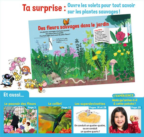 Ta surprise: Ouvre les volets pour tout savoir sur les plantes sauvages - Youpi, j'ai compris ! n°380, mai 2020