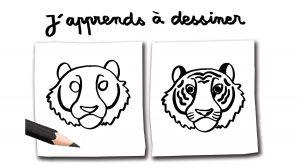 """J'apprends à dessiner un tigre"", Youpi n°383, août 2020. Illustration : Carole Gauthier."