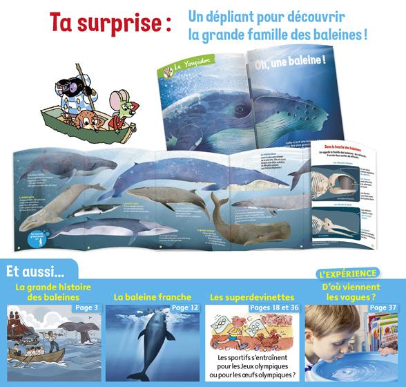 Youpi, j'ai compris ! n°394, juillet 2021 - La baleine - La géante des océans - Dépliant pour découvrir la grande famille des baleines