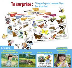 Youpi, j'ai compris ! n°395, août 2021 - Nos amis les insectes - Guide pour reconnaître les insectes !